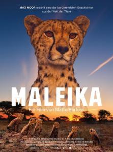 maleika (1)