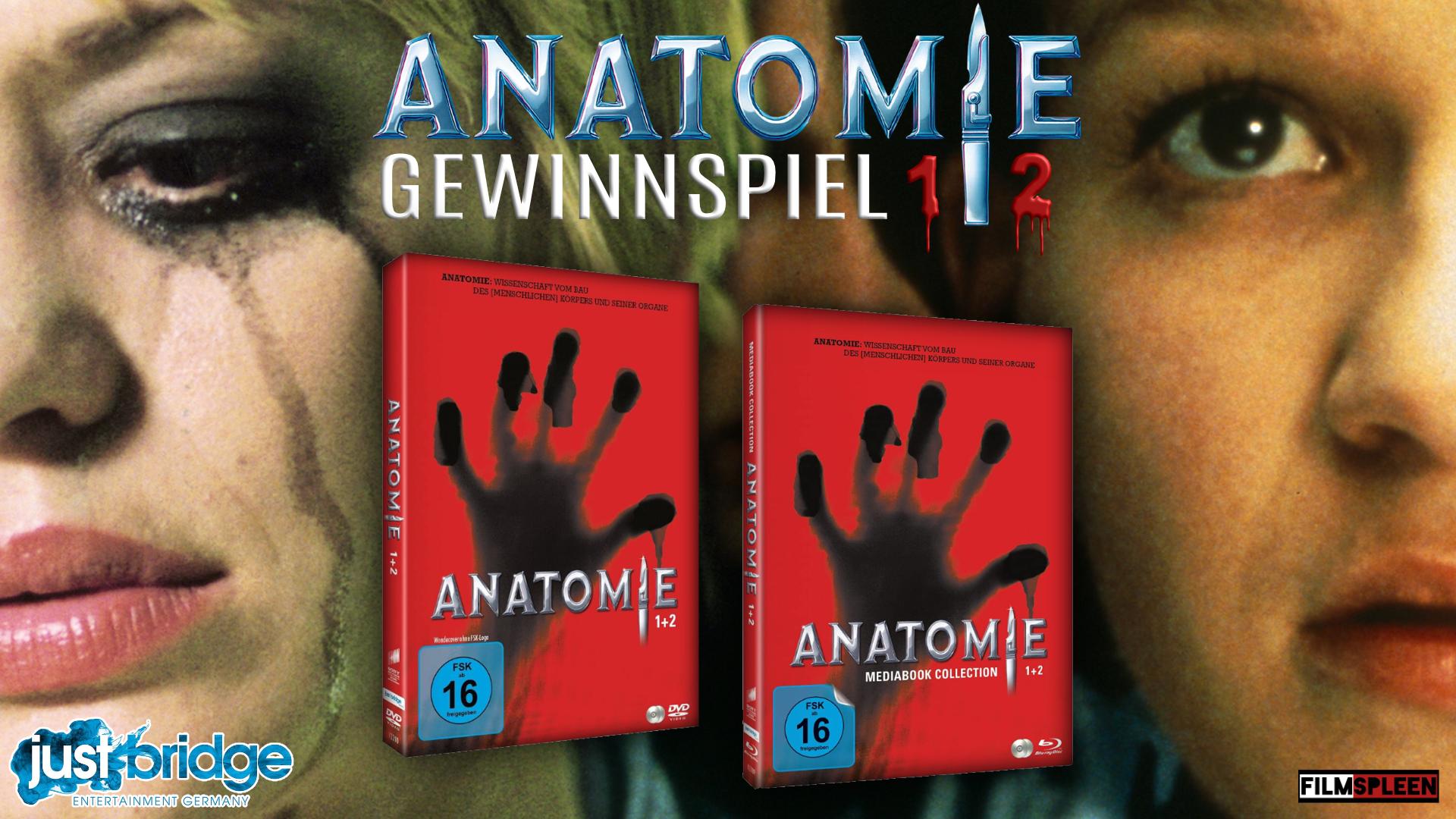 ANATOMIE_1_2_GWS